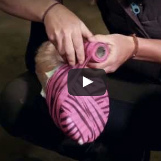 Sore Foot? Pack a Hoof Like a Pro, presented by Wahl
