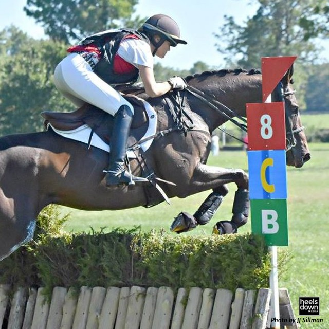 Between Training and Prelim: New USEA Modified Level To Debut In 2017