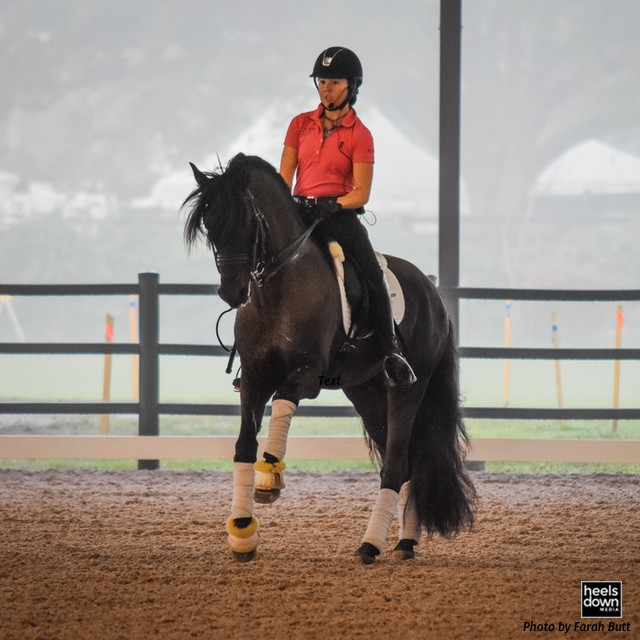 Follow Your Dreams to Wellington: Robert Dover and Dressage4Kids Announce Future Stars Scholarship