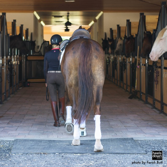 Get Your Relationship with Your Barn Owner Back on Track