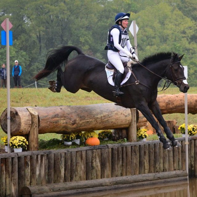 Eventing Explained: Do Event Horses Enjoy Cross Country?