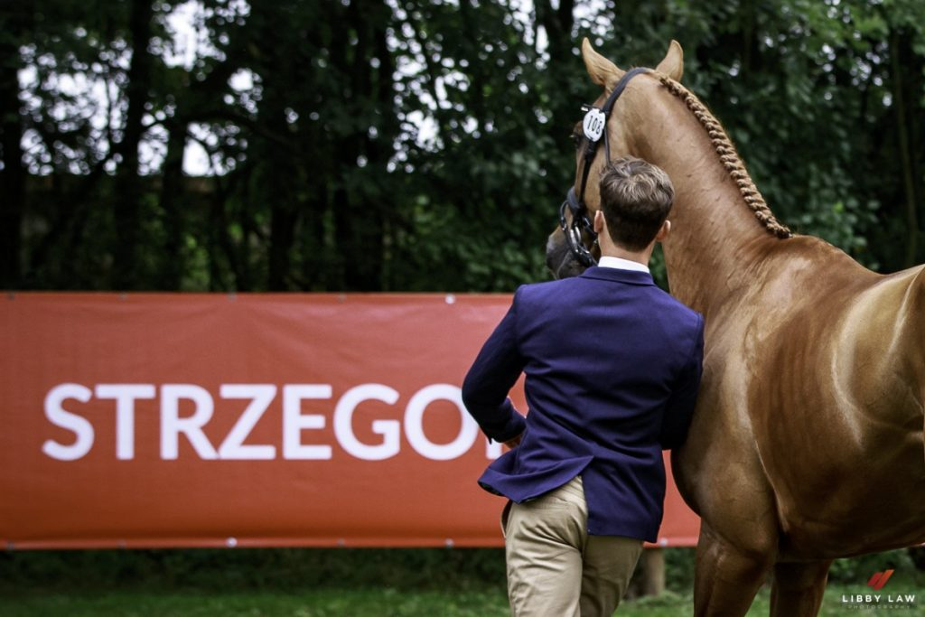 Don't Miss It - Michael Jung Could Make History at the European Eventing Championships