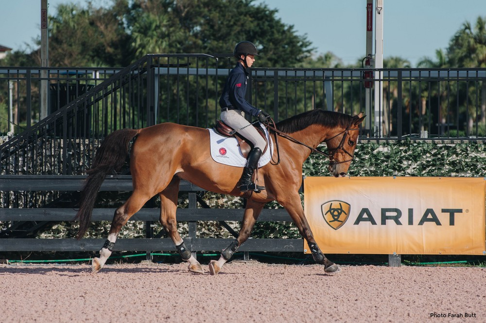 Are You Riding Your Horse into Lameness or Soundness?