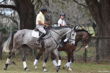 Fundamentals: How Bruce Davidson Starts Young Horses
