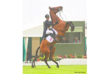 """I Always Have an Exit Strategy"": Handling Unpredictable Situations with LandSafe Equestrian"