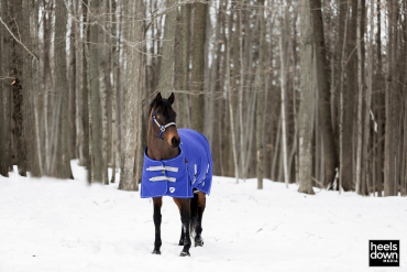 Blanketing Your Horse for Changing Temperatures, Presented by Kensington Protective Products