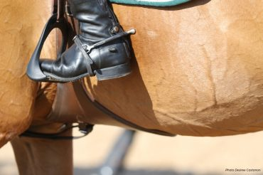 The Blood Rule: Could the FEI Ease Restrictions?