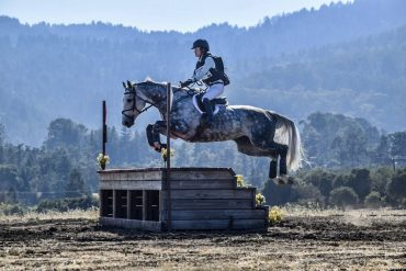 Baking and Braiding 'til 4 A.M.: How a Scrappy Young Rider Affords an Expensive Sport
