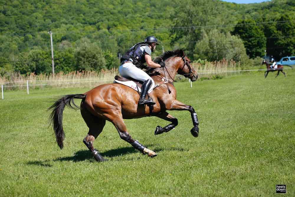 Natural Horsemanship Isn't a Dirty Word