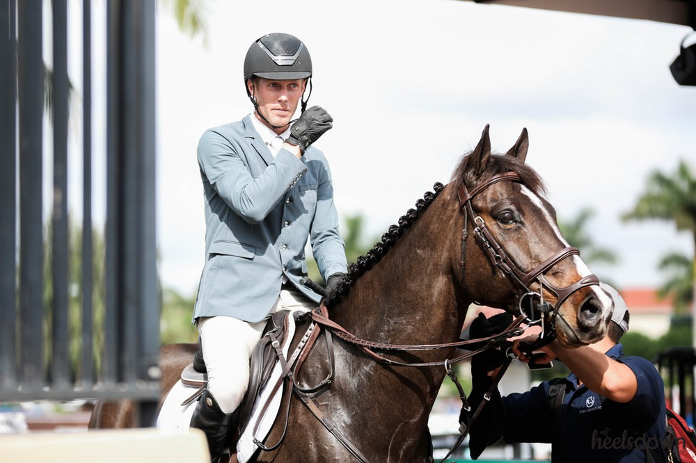 From Green to Grand Prix: How Andrew Welles Develops Horses