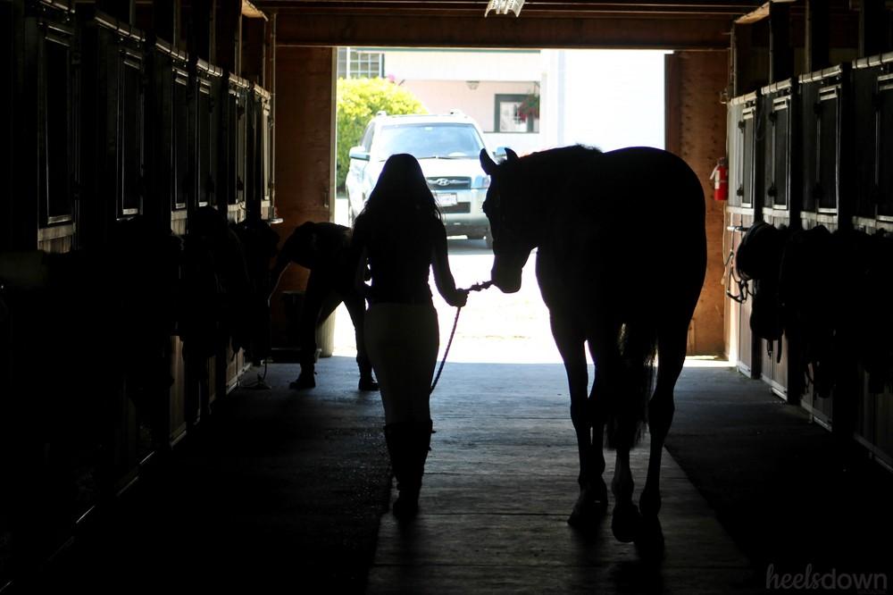 Actress Alisha Newton Talks Horses and Heartland