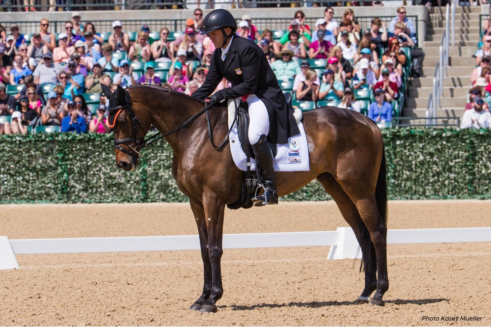 Spicer's Corner: There's Nothing Typical About Thoroughbreds