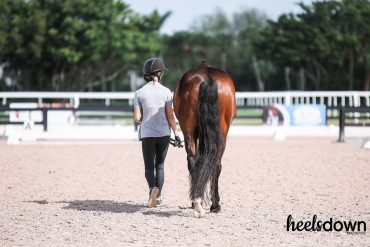 I'm A Bad Horse Mom. Here Are All The Reasons Why
