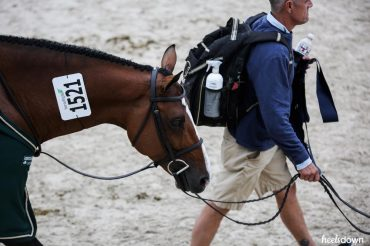 Horse Show Packing Lists: What Pro Grooms Bring, Presented by Wahl