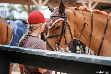 Are You Cut Out to Work in the Horse Business? Presented by Wahl