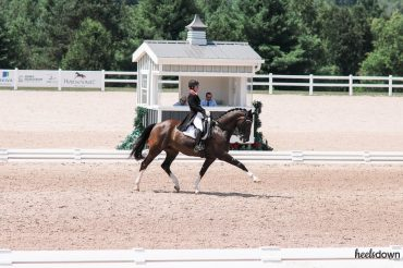 What Makes a Truly Great Dressage Freestyle?