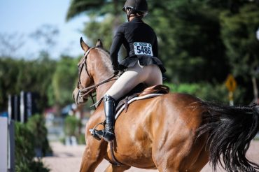 Imposter Syndrome in the Horse World