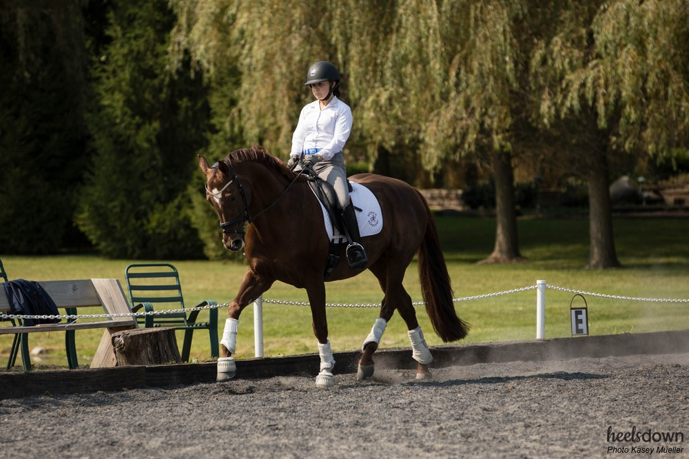 How to Ride an Effective Warm Up in the Dressage Ring