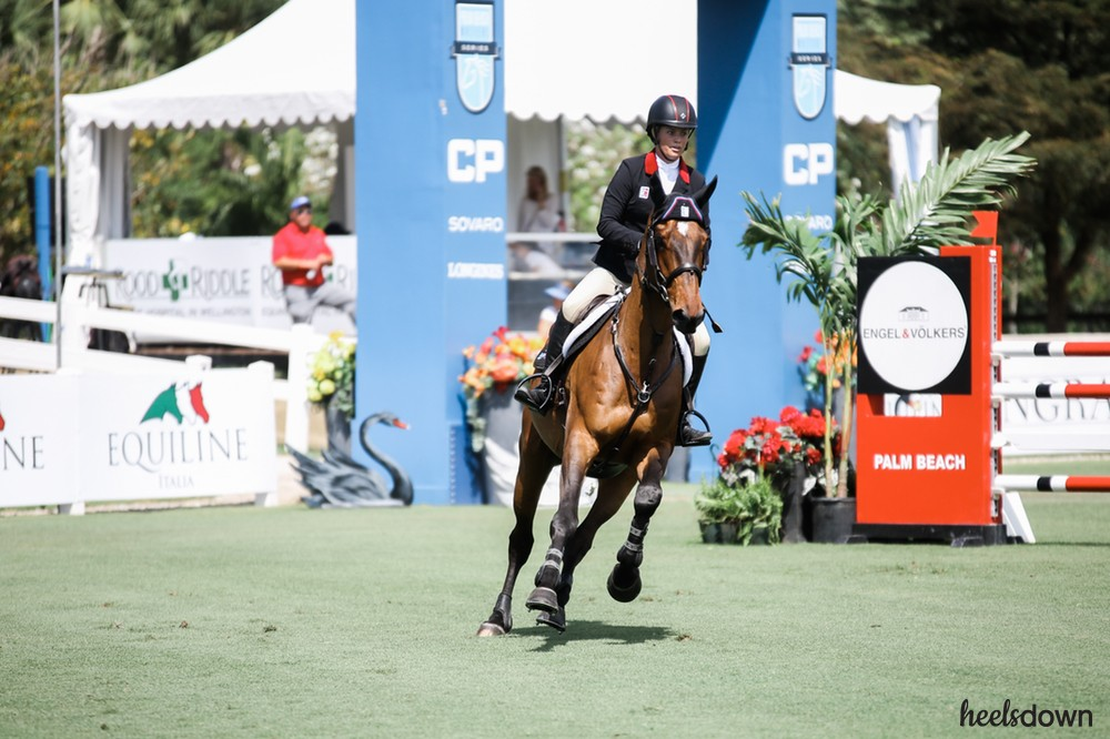 The Evolution of Modern Show Jumping