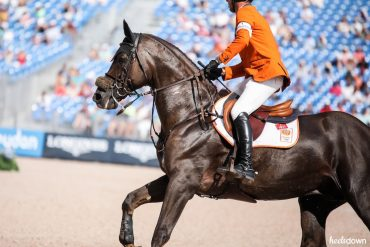 Best Dressed Horses of WEG Show Jumping, Presented by Wahl