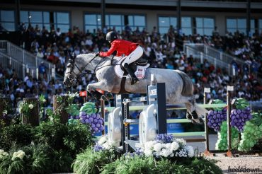 Show Jumping: The Ultimate Strength and Conditioning Guide for Horses