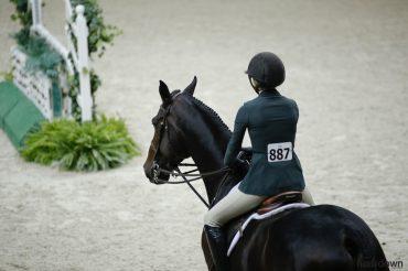 Equitation Scoring Explained