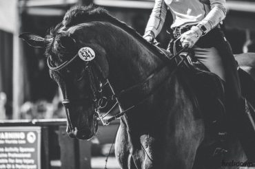 Olympic Dressage Rider Tackles the 'Good, Bad and Ugly' in Equestrian Sport