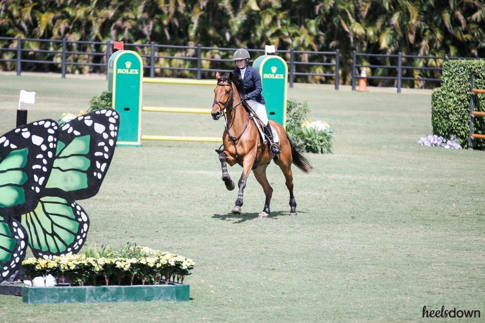 Why Dressage Matters for Jumpers