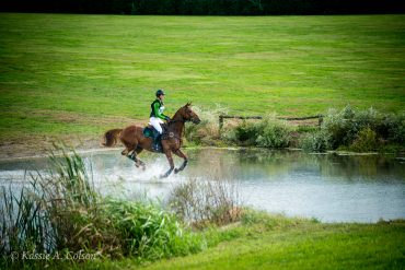 What To Expect If You Want To Go To the RRP Thoroughbred Makeover