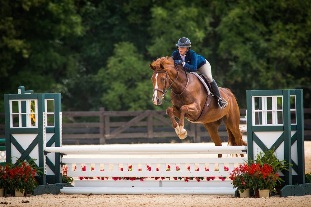 How I Learned That You Don't Have to Go Broke In the Hunter Ring - Heels Down Mag