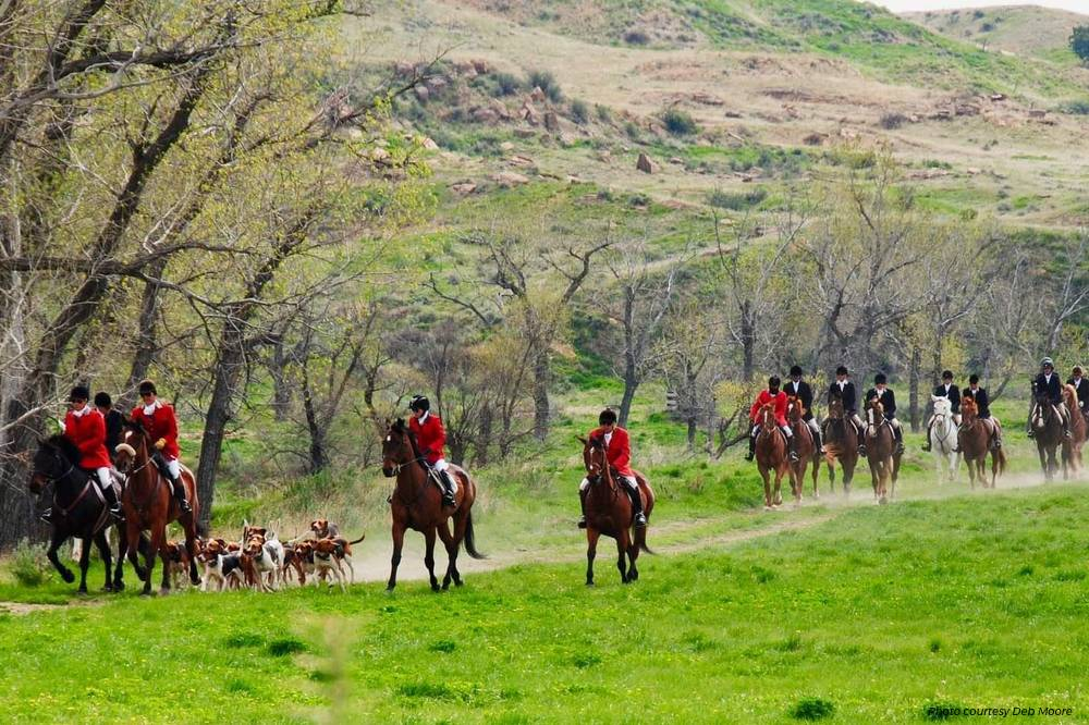 Ever Wanted To Try Fox Hunting? Here's How. - Heels Down Mag
